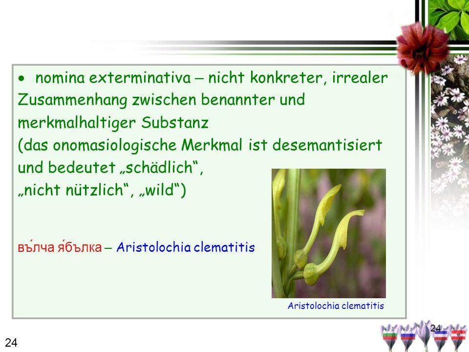 24 nomina exterminativa – nicht konkreter, irrealer Zusammenhang zwischen benannter und merkmalhaltiger Substanz (das onomasiologische Merkmal ist des
