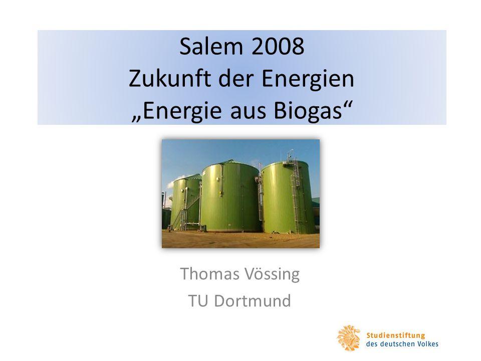 Salem 2008 Zukunft der Energien Energie aus Biogas Thomas Vössing TU Dortmund