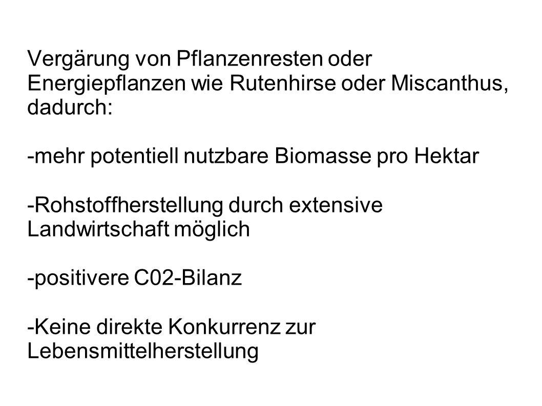 Vergärung von Pflanzenresten oder Energiepflanzen wie Rutenhirse oder Miscanthus, dadurch: -mehr potentiell nutzbare Biomasse pro Hektar -Rohstoffhers