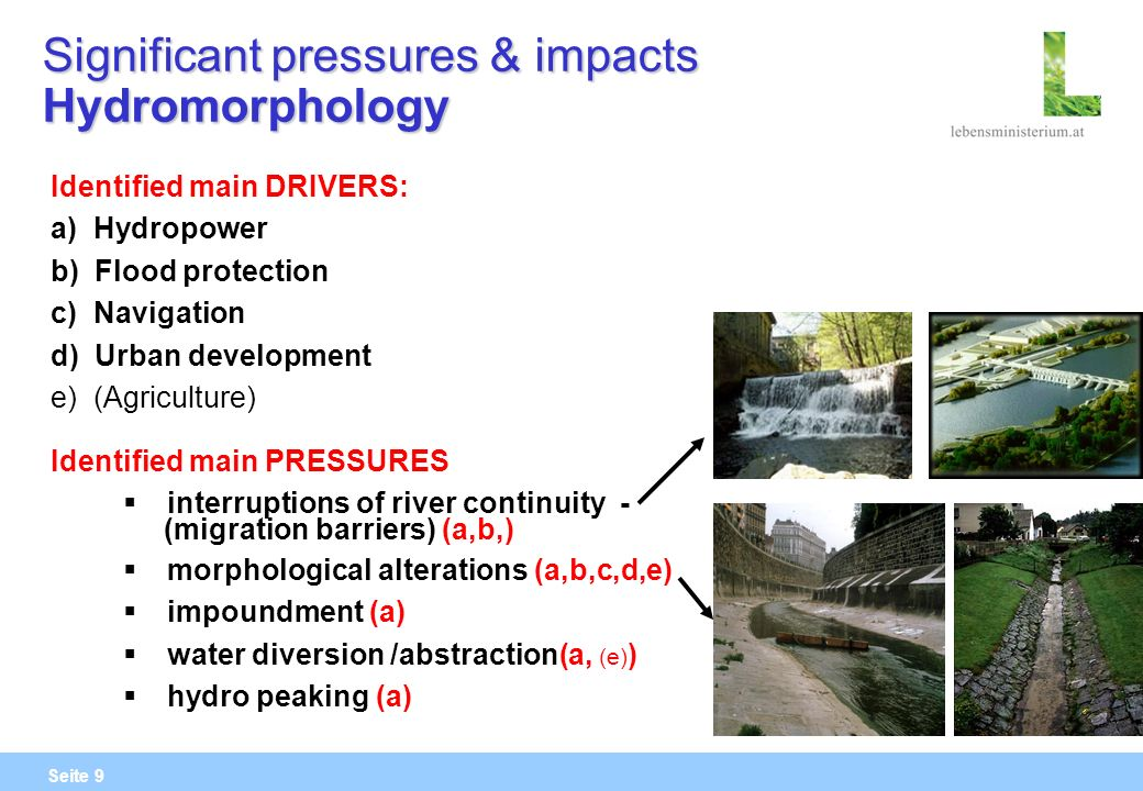 Seite 9 Significant pressures & impacts Hydromorphology Identified main DRIVERS: a) Hydropower b) Flood protection c) Navigation d) Urban development e) (Agriculture) Identified main PRESSURES interruptions of river continuity - (migration barriers) (a,b,) morphological alterations (a,b,c,d,e) impoundment (a) water diversion /abstraction(a, (e) ) hydro peaking (a)