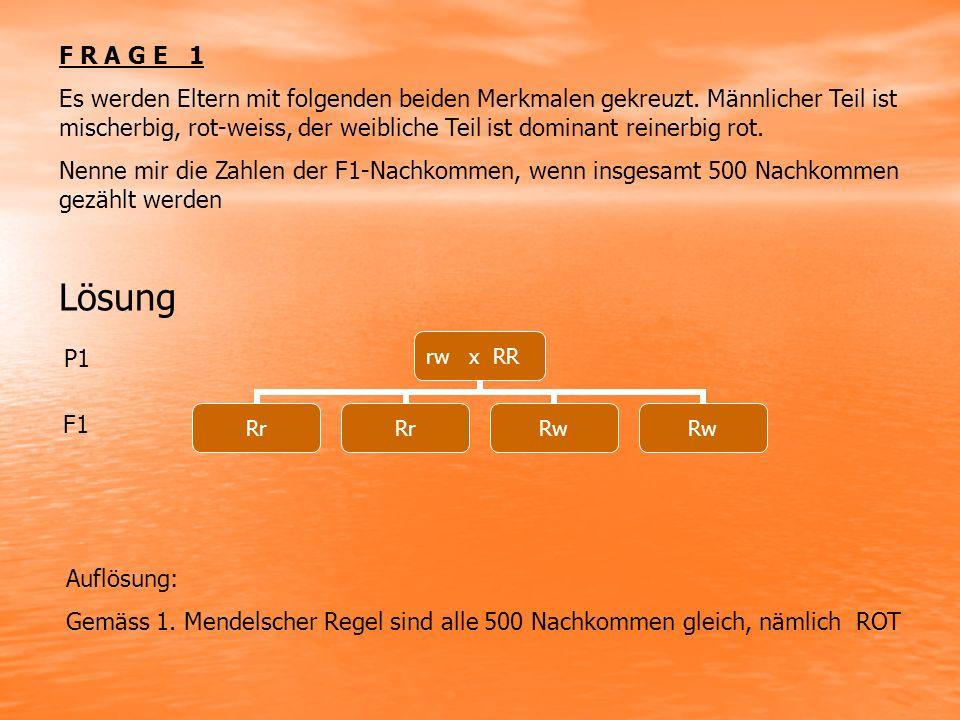 F R A G E 1 Es werden Eltern mit folgenden beiden Merkmalen gekreuzt.