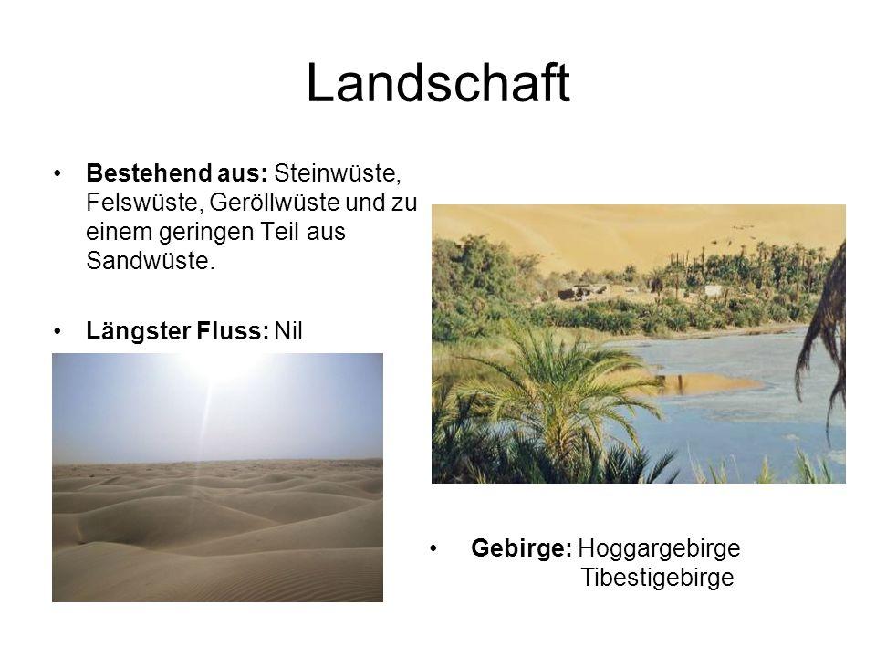 Landschaft Bestehend aus: Steinwüste, Felswüste, Geröllwüste und zu einem geringen Teil aus Sandwüste. Längster Fluss: Nil Gebirge: Hoggargebirge Tibe