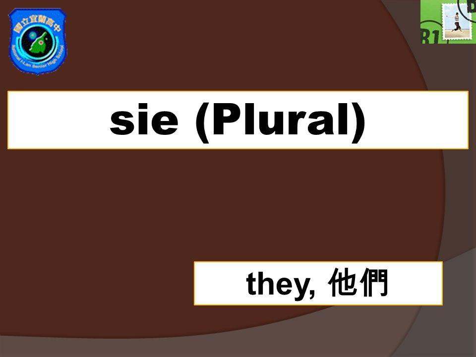 sie (Plural) they,
