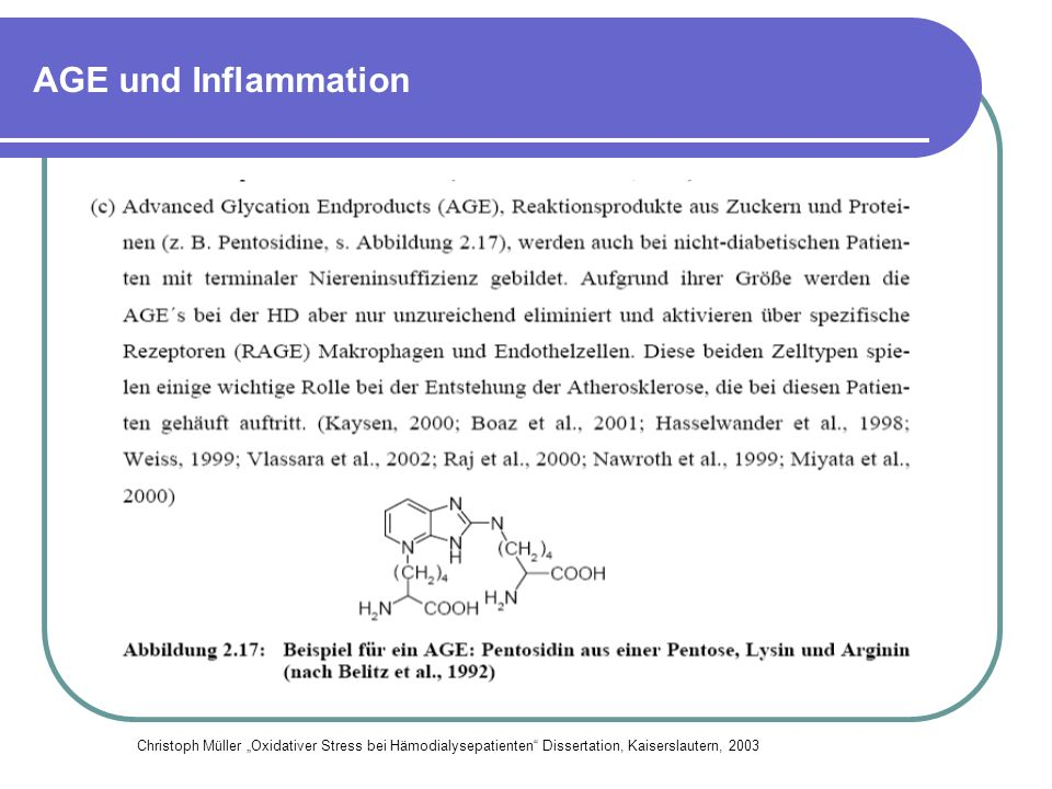 Komplementaktivierung und Inflammation Ahfrenholz P., Winkler RE, et al.