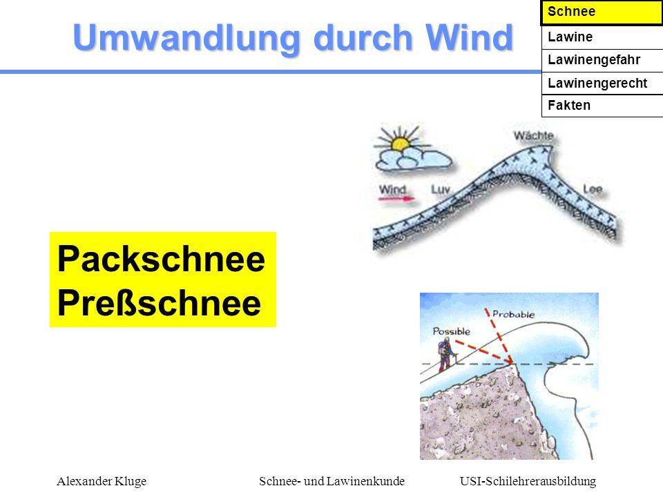 USI-Schilehrerausbildung Alexander KlugeSchnee- und Lawinenkunde Umwandlung durch Wind Packschnee Preßschnee Schnee Lawine Lawinengefahr Lawinengerech
