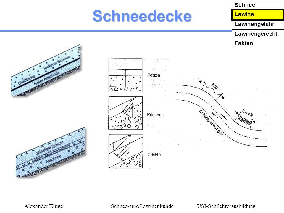 USI-Schilehrerausbildung Alexander KlugeSchnee- und Lawinenkunde Schneedecke Schnee Lawine Lawinengefahr Lawinengerecht Fakten