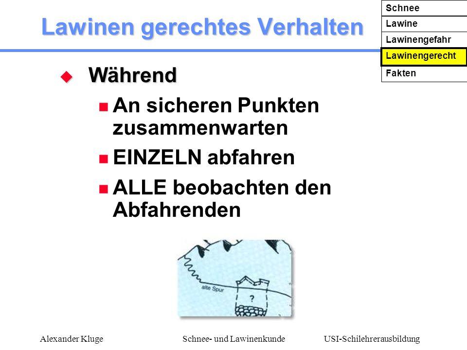 USI-Schilehrerausbildung Alexander KlugeSchnee- und Lawinenkunde Lawinen gerechtes Verhalten Während Während An sicheren Punkten zusammenwarten EINZEL