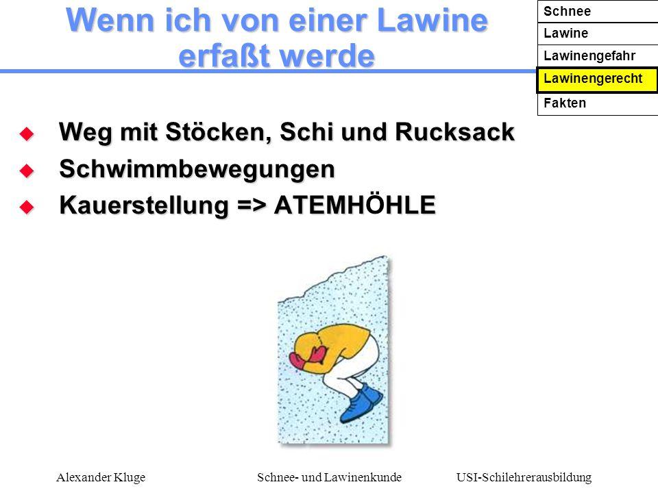 USI-Schilehrerausbildung Alexander KlugeSchnee- und Lawinenkunde Wenn ich von einer Lawine erfaßt werde Weg mit Stöcken, Schi und Rucksack Weg mit Stö