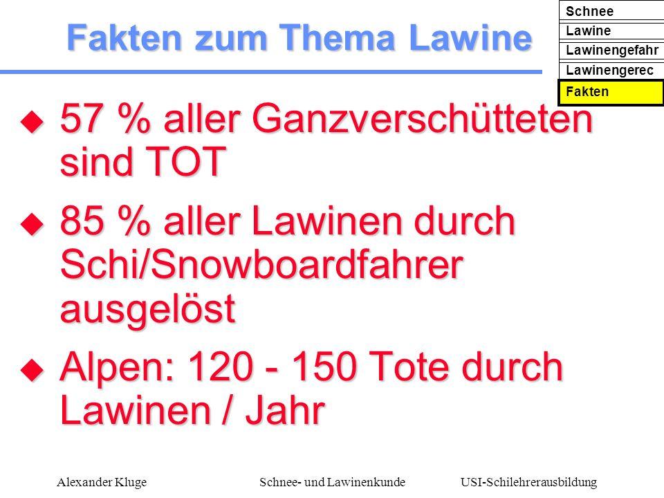 USI-Schilehrerausbildung Alexander KlugeSchnee- und Lawinenkunde Fakten zum Thema Lawine 57 % aller Ganzverschütteten sind TOT 57 % aller Ganzverschüt