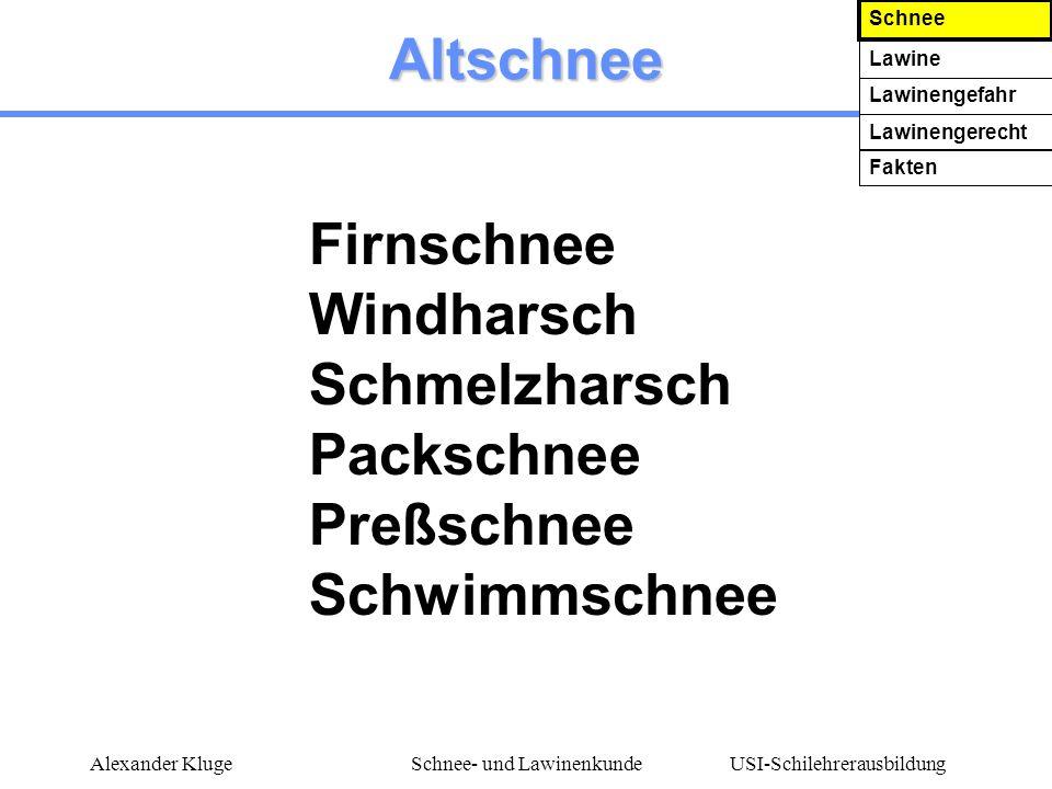 USI-Schilehrerausbildung Alexander KlugeSchnee- und Lawinenkunde Altschnee Firnschnee Windharsch Schmelzharsch Packschnee Preßschnee Schwimmschnee Sch
