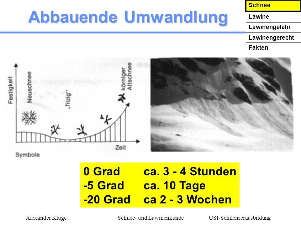 USI-Schilehrerausbildung Alexander KlugeSchnee- und Lawinenkunde Abbauende Umwandlung 0 Gradca. 3 - 4 Stunden -5 Gradca. 10 Tage -20 Gradca 2 - 3 Woch