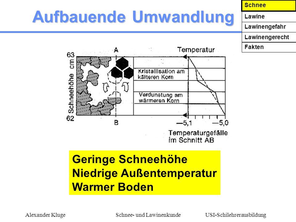USI-Schilehrerausbildung Alexander KlugeSchnee- und Lawinenkunde Aufbauende Umwandlung Geringe Schneehöhe Niedrige Außentemperatur Warmer Boden Schnee