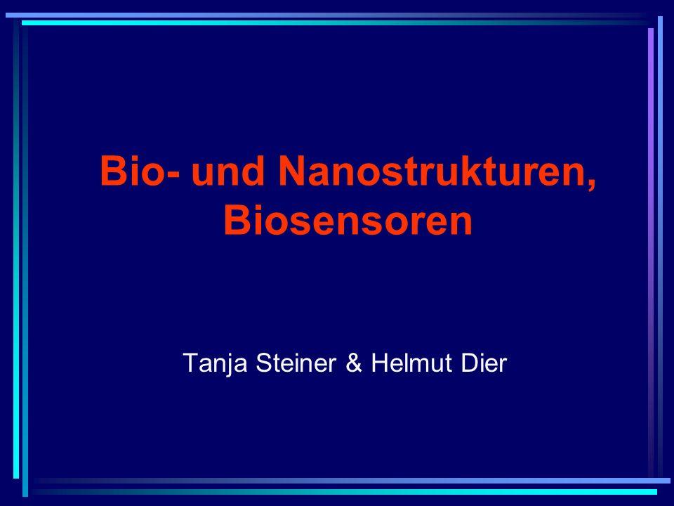 Tanja Steiner & Helmut Dier Bio- und Nanostrukturen, Biosensoren