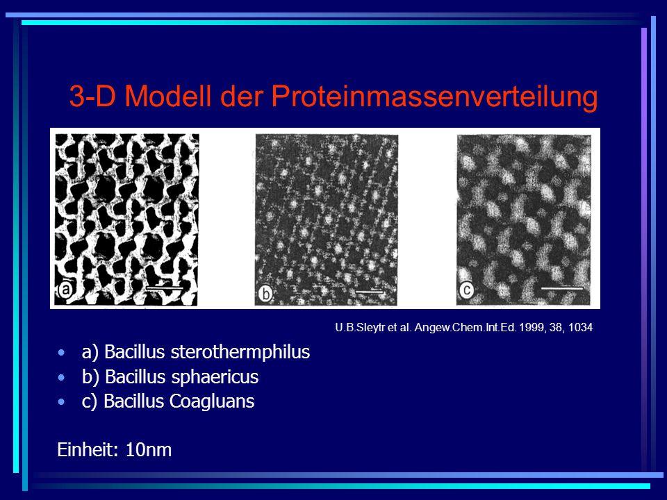 3-D Modell der Proteinmassenverteilung a) Bacillus sterothermphilus b) Bacillus sphaericus c) Bacillus Coagluans Einheit: 10nm U.B.Sleytr et al. Angew