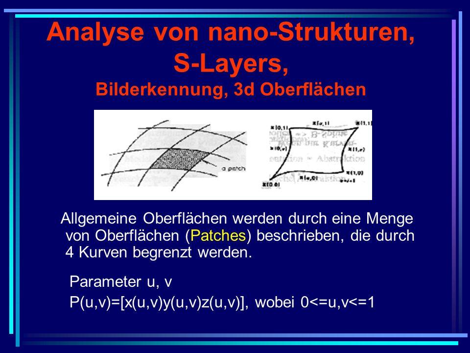 Analyse von nano-Strukturen, S-Layers, Bilderkennung, 3d Oberflächen Allgemeine Oberflächen werden durch eine Menge von Oberflächen (Patches) beschrie