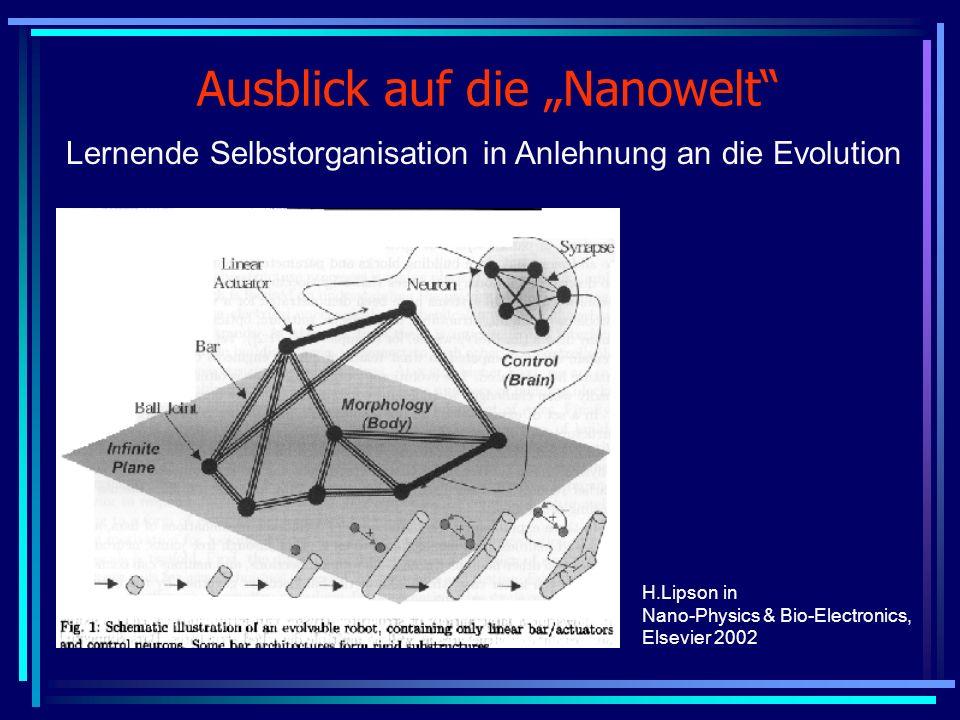 Ausblick auf die Nanowelt Lernende Selbstorganisation in Anlehnung an die Evolution H.Lipson in Nano-Physics & Bio-Electronics, Elsevier 2002
