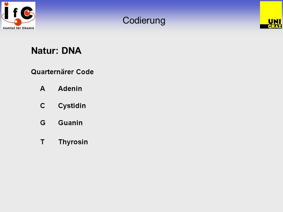 Codierung Natur: DNA Quarternärer Code AAdenin CCystidin GGuanin TThyrosin