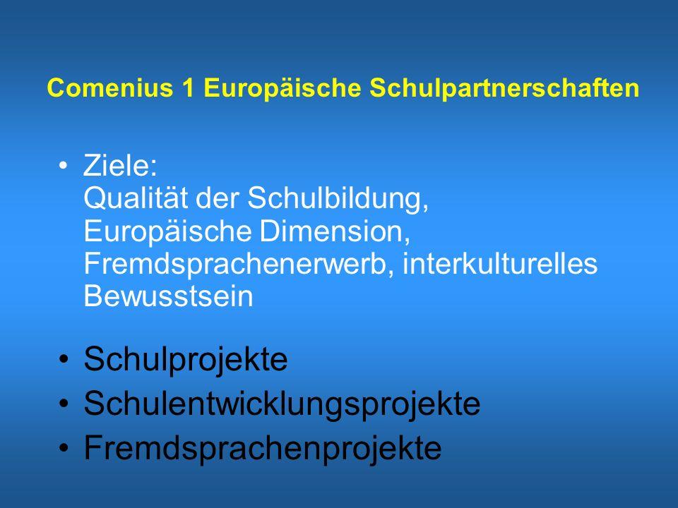 Comenius 1 Europäische Schulpartnerschaften Ziele: Qualität der Schulbildung, Europäische Dimension, Fremdsprachenerwerb, interkulturelles Bewusstsein Schulprojekte Schulentwicklungsprojekte Fremdsprachenprojekte