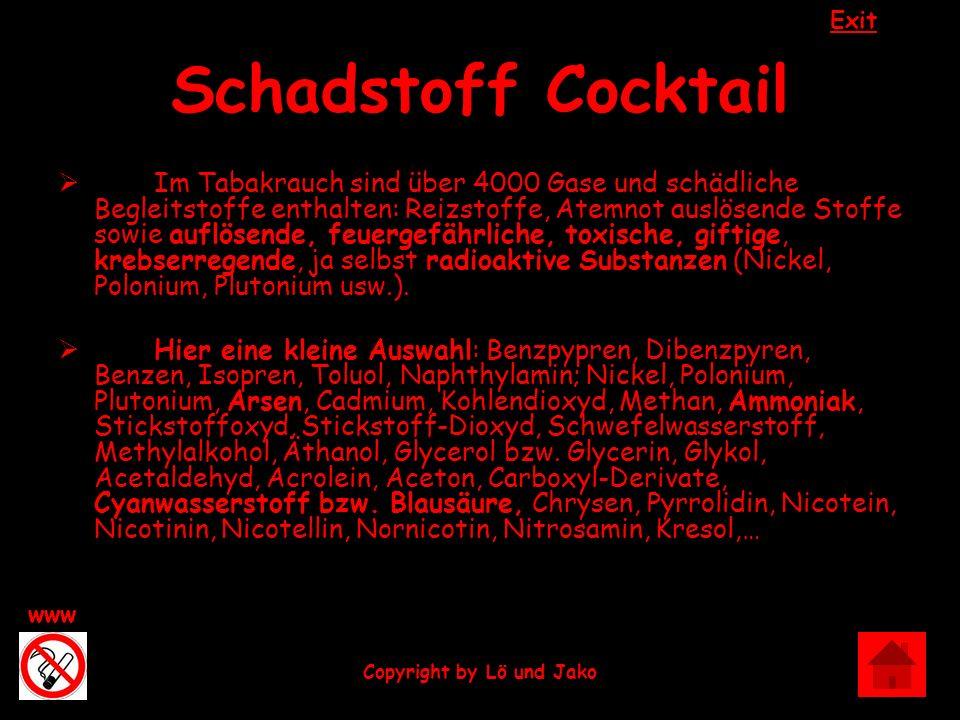 Exit www Copyright by Lö und Jako Schadstoff Cocktail Im Tabakrauch sind über 4000 Gase und schädliche Begleitstoffe enthalten: Reizstoffe, Atemnot au