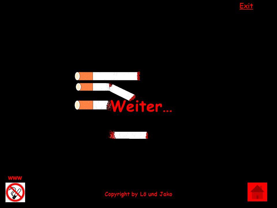 Exit www Copyright by Lö und Jako …bis zum bitteren Ende…