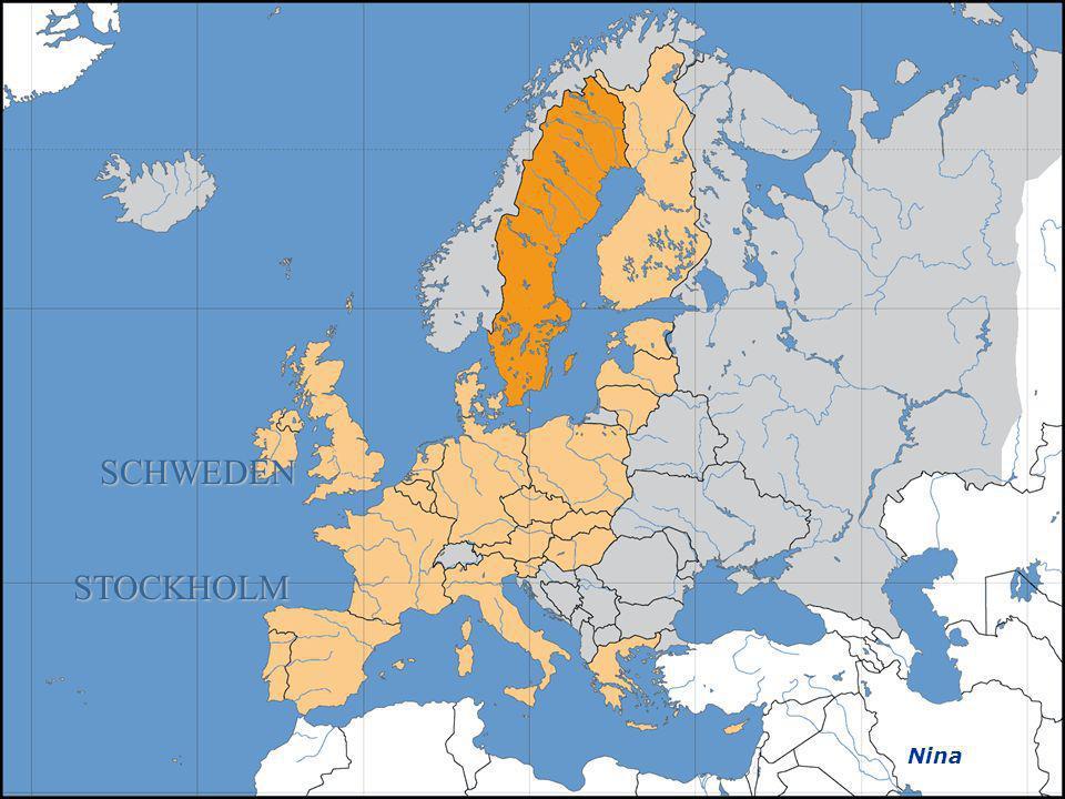 Estland Tallinn (Reval) Dominik