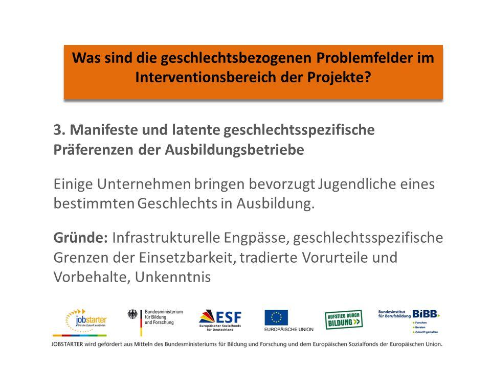 Was sind die geschlechtsbezogenen Problemfelder im Interventionsbereich der Projekte.