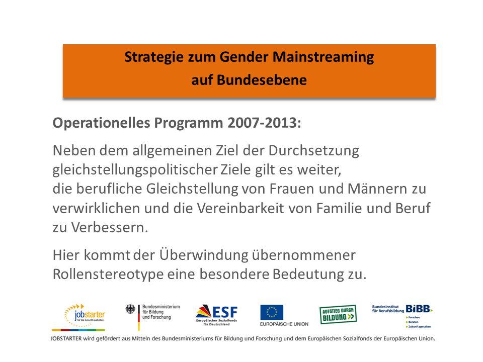 Operationelles Programm 2007-2013: Neben dem allgemeinen Ziel der Durchsetzung gleichstellungspolitischer Ziele gilt es weiter, die berufliche Gleichstellung von Frauen und Männern zu verwirklichen und die Vereinbarkeit von Familie und Beruf zu Verbessern.