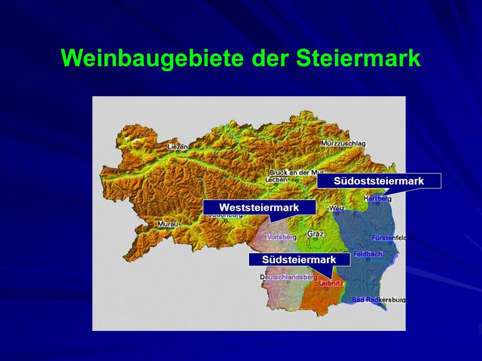 Weinbaugebiete Österreichs vier Weinbauregionen: Wien, Niederösterreich Steiermark, Burgenland Steiermark, Burgenland 16 Weinbaugebieten 16 Weinbaugeb