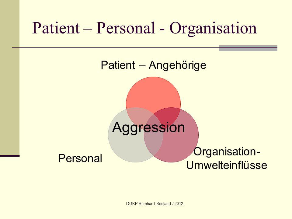 DGKP Bernhard Seeland / 2012 Patient – Personal - Organisation Patient – Angehörige Organisation- Umwelteinflüsse Personal Aggression