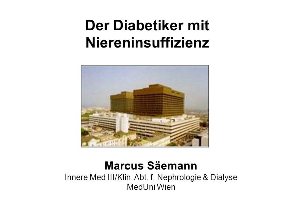 Marcus Säemann Innere Med III/Klin. Abt. f. Nephrologie & Dialyse MedUni Wien Der Diabetiker mit Niereninsuffizienz