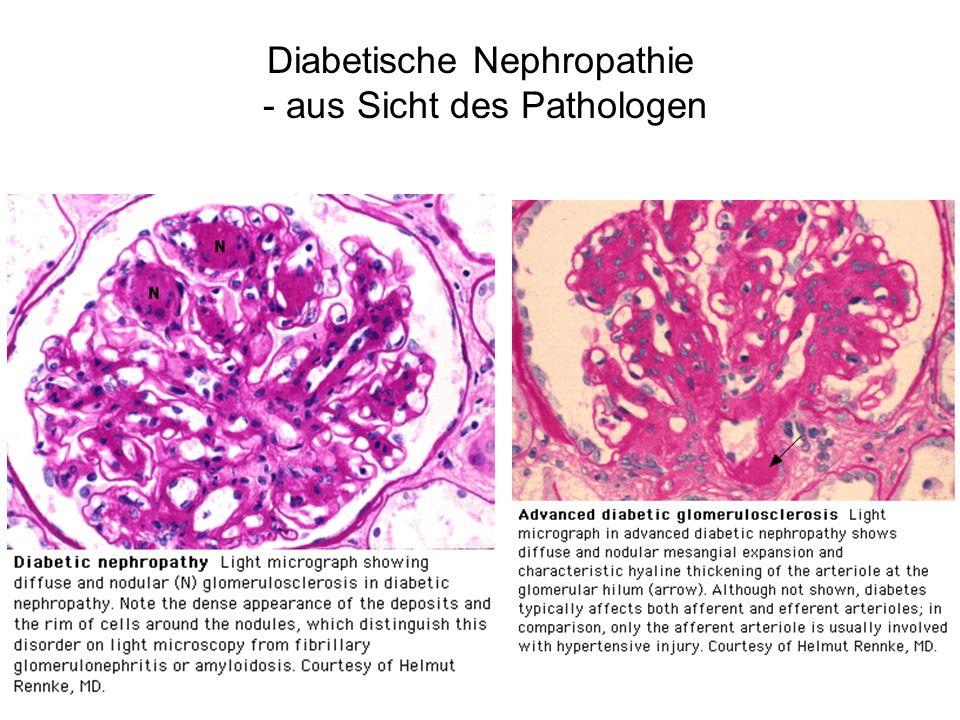 Risikoreduktion durch Senkung des HbA1c von 0,9% über 10 Jahre in der UKPDS Risikoreduktion 12% 25% 16% 24% 21% 33% Komplikationen sämtliche Diabeteskomplikationen mikrovaskuläre Komplikationen Myokardinfarkt Kataraktoperation Retinopathie (12 Jahre) Albuminurie (12 Jahre) Signifikanz p = 0.029 p = 0.0099 p = 0.052 p = 0.046 p = 0.015 p = 0.000054 ukpds