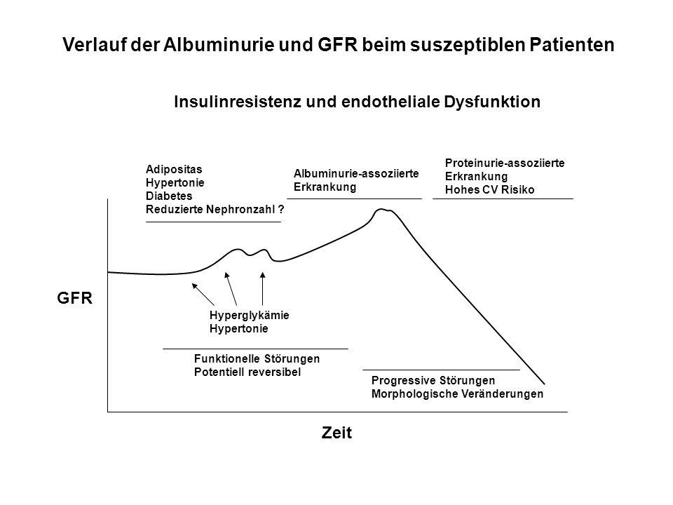 Adipositas Hypertonie Diabetes Reduzierte Nephronzahl ? Hyperglykämie Hypertonie Funktionelle Störungen Potentiell reversibel Progressive Störungen Mo