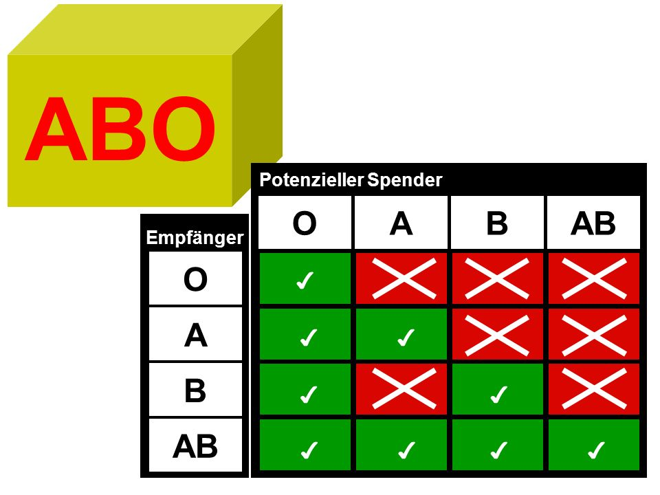 ABO OABAB Potenzieller Spender O A B AB Empfänger