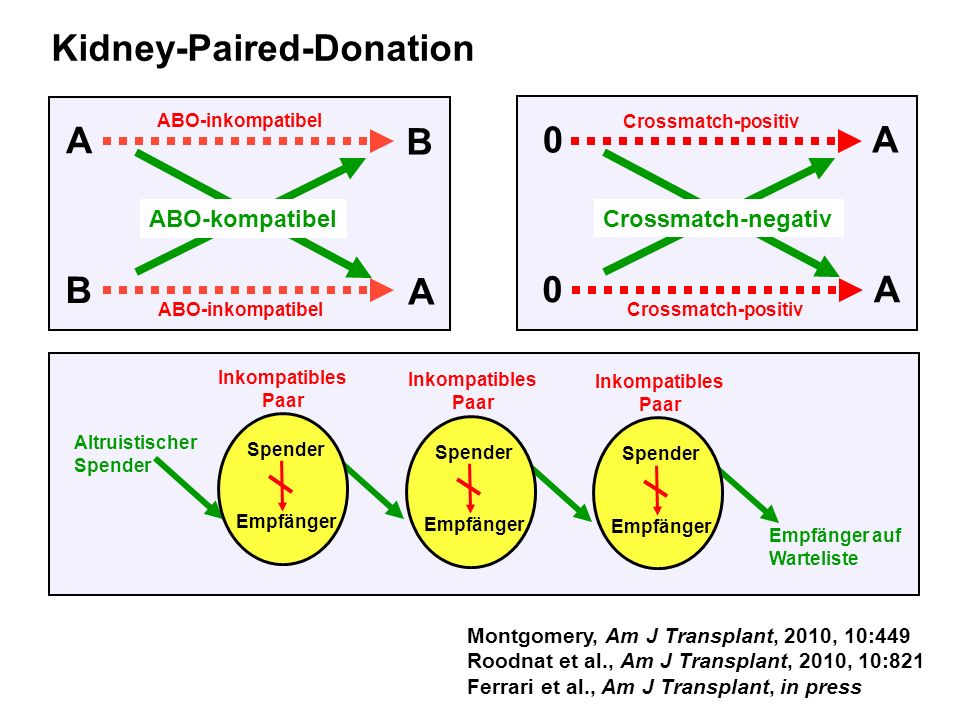 A B B A 0A 0A Crossmatch-positiv Crossmatch-negativ ABO-kompatibel ABO-inkompatibel Kidney-Paired-Donation Montgomery, Am J Transplant, 2010, 10:449 R