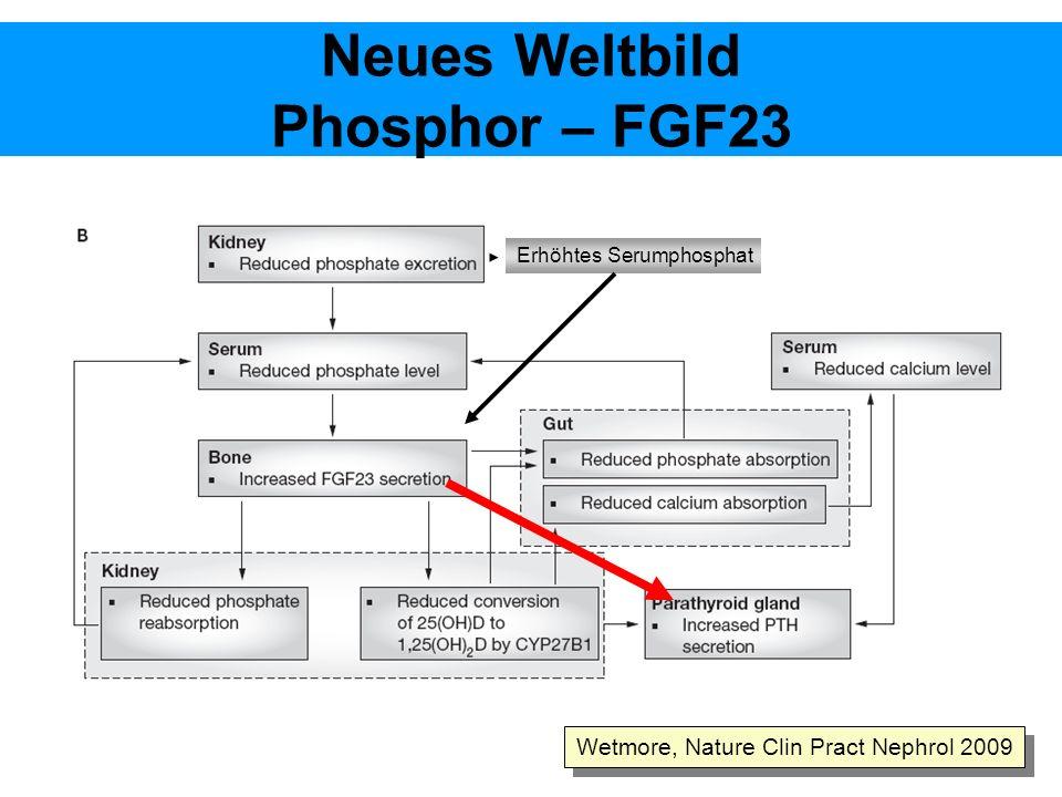 Neues Weltbild Phosphor – FGF23 Wetmore, Nature Clin Pract Nephrol 2009 Erhöhtes Serumphosphat