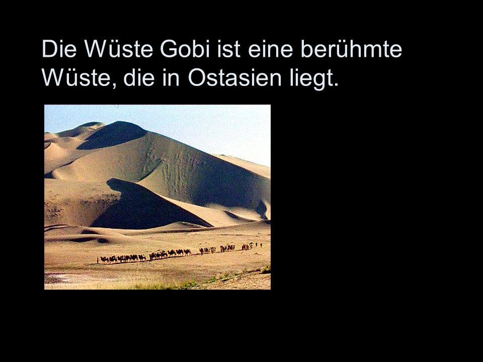 Die Wüste Gobi ist eine berühmte Wüste, die in Ostasien liegt.