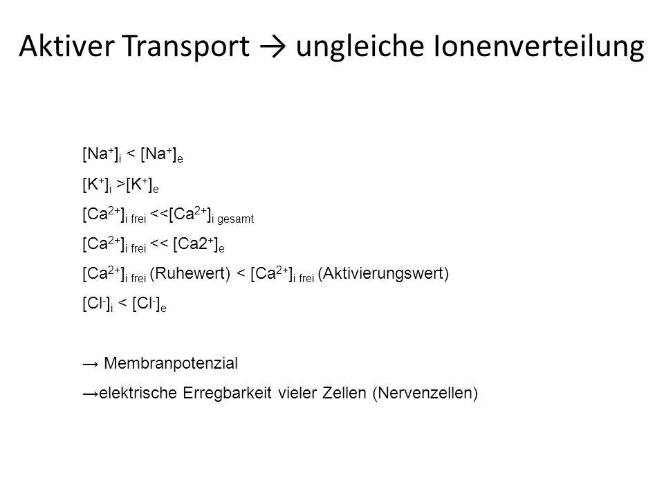 Golgi-Apparat - Aufbau Osmierung-Safranin LM: Versilberung, Osmieren Ösen, Haken EM: Nahe rER, polarisiert (cis=Bildungsseite, trans=Reifungsseite) Stapeln von Zisternen + Transportvesikeln, Cis- und Trans-Golgi-Netzwerk (CGN bzw.