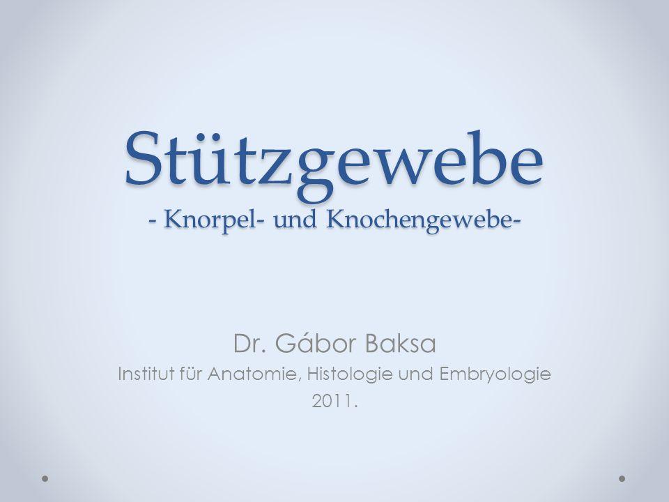 Stützgewebe - Knorpel- und Knochengewebe- Dr. Gábor Baksa Institut für Anatomie, Histologie und Embryologie 2011.
