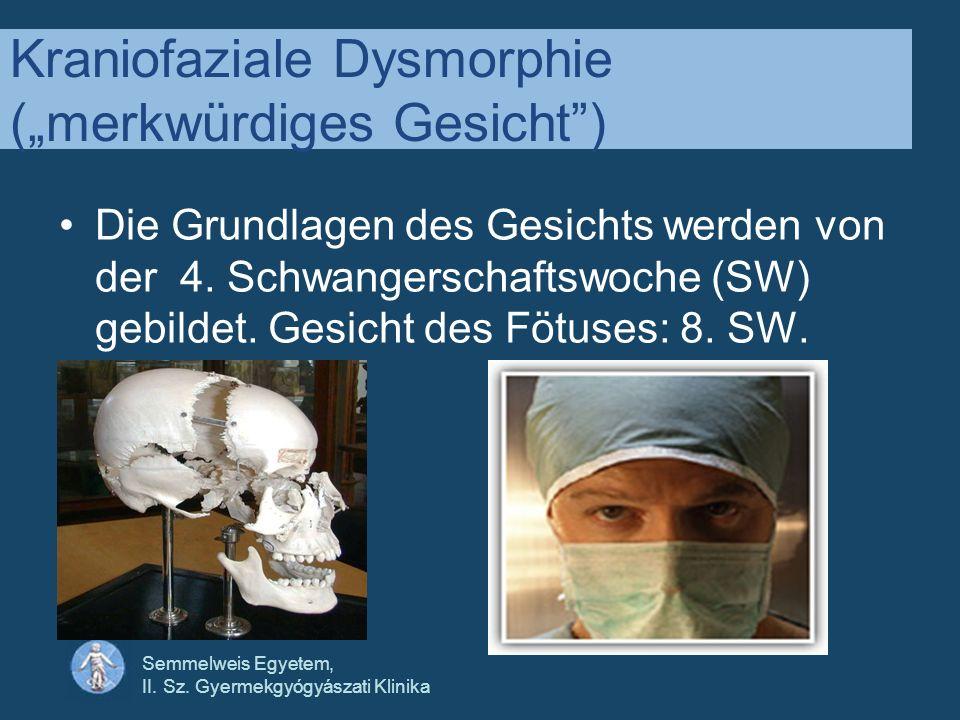 Semmelweis Egyetem, II. Sz. Gyermekgyógyászati Klinika Kraniofaziale Dysmorphie (merkwürdiges Gesicht) Die Grundlagen des Gesichts werden von der 4. S