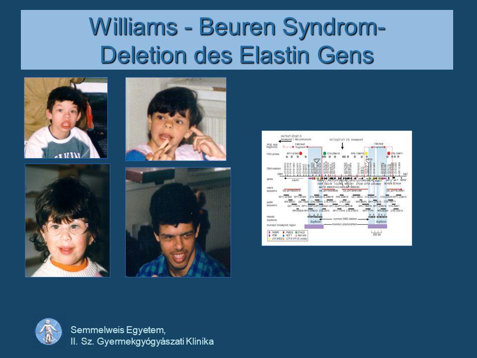 Semmelweis Egyetem, II. Sz. Gyermekgyógyászati Klinika Williams - Beuren Syndrom- Deletion des Elastin Gens