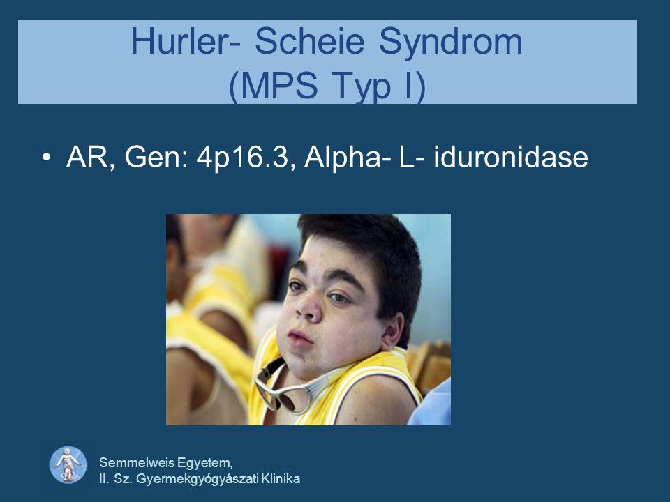 Semmelweis Egyetem, II. Sz. Gyermekgyógyászati Klinika Hurler- Scheie Syndrom (MPS Typ I) AR, Gen: 4p16.3, Alpha- L- iduronidase