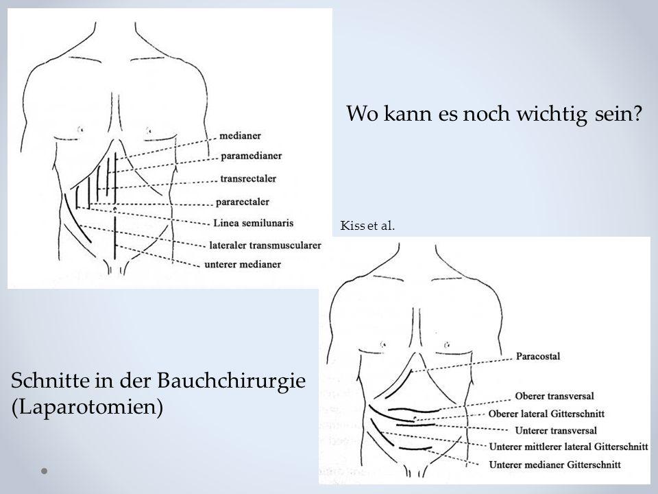 Wo kann es noch wichtig sein? Schnitte in der Bauchchirurgie (Laparotomien) Kiss et al.
