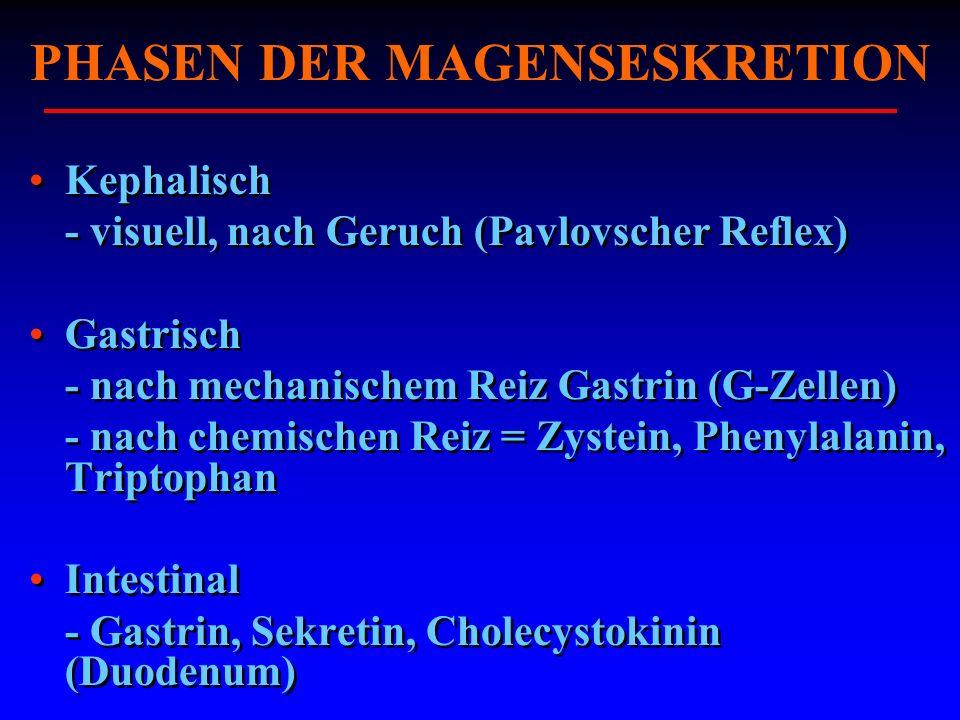 PHASEN DER MAGENSESKRETION Kephalisch - visuell, nach Geruch (Pavlovscher Reflex) Gastrisch - nach mechanischem Reiz Gastrin (G-Zellen) - nach chemisc