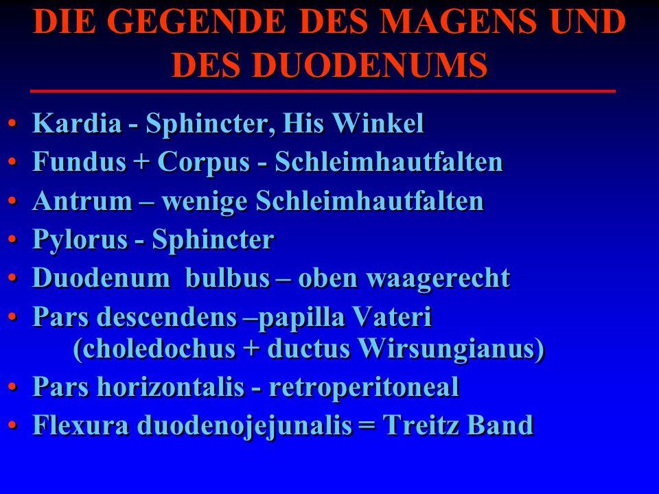 DIE GEGENDE DES MAGENS UND DES DUODENUMS Kardia - Sphincter, His Winkel Fundus + Corpus - Schleimhautfalten Antrum – wenige Schleimhautfalten Pylorus