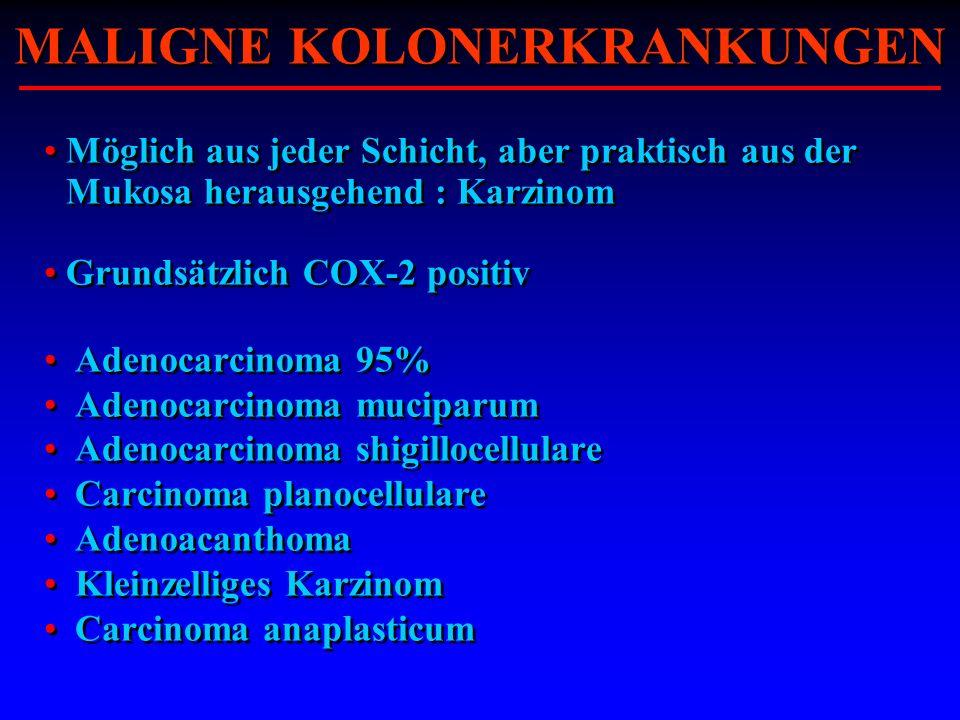 Möglich aus jeder Schicht, aber praktisch aus der Mukosa herausgehend : Karzinom Grundsätzlich COX-2 positiv Adenocarcinoma 95% Adenocarcinoma mucipar