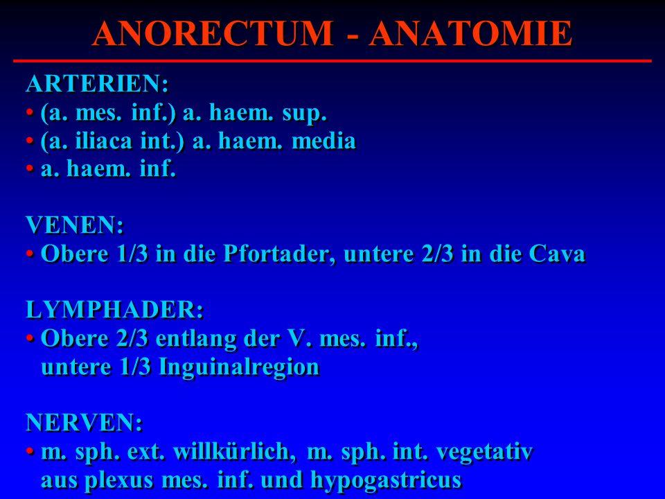 ARTERIEN: (a. mes. inf.) a. haem. sup. (a. iliaca int.) a. haem. media a. haem. inf. VENEN: Obere 1/3 in die Pfortader, untere 2/3 in die Cava LYMPHAD