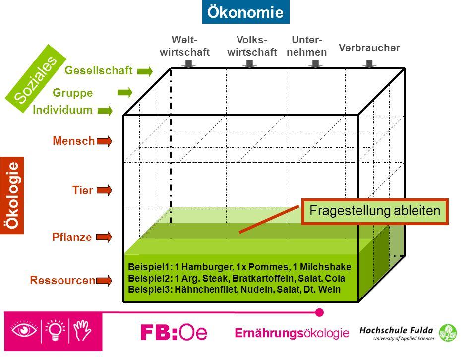 sehen denken handeln Beispiel 2: Landwirtschaft Fragestellung: Welche Auswirkung hat die Produktion eines Steaks in der deutschen Landwirtschaft auf die Umwelt.