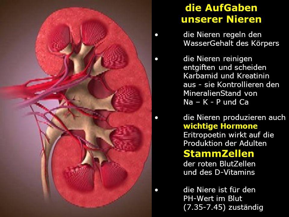 die Nieren regeln den WasserGehalt des Körpersdie Nieren reinigen entgiften und scheiden Karbamid und Kreatinin aus - sie Kontrollieren den MineralienStand von Na – K - P und Cadie Nieren produzieren auch wichtige Hormone Eritropoetin wirkt auf die Produktion der Adulten StammZellen der roten BlutZellen und des D-Vitaminsdie Niere ist für den PH-Wert im Blut (7.35-7.45) zuständig die AufGaben unserer Nieren