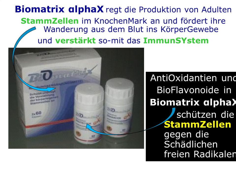 g AntiOxidantien und BioFlavonoide in Biomatrix αlphaX schützen die StammZellen gegen die Schädlichen freien Radikalen Biomatrix αlphaX regt die Produktion von Adulten StammZellen im KnochenMark an und fördert ihre Wanderung aus dem Blut ins KörperGewebe und verstärkt so-mit das ImmunSYstem