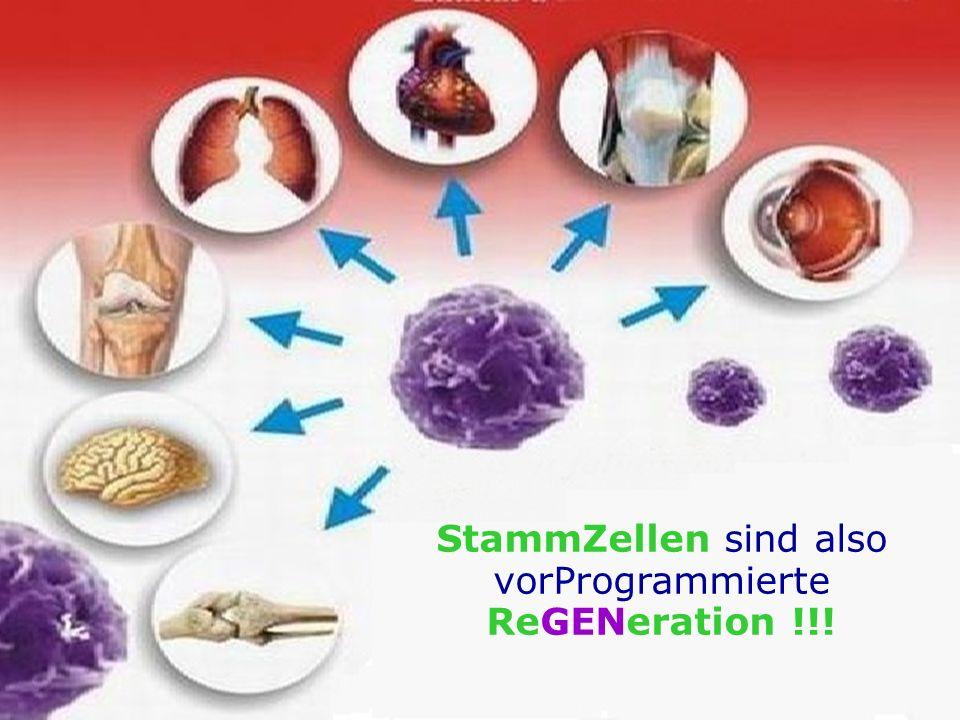 StammZellen sind also vorProgrammierte ReGENeration !!!
